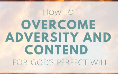 How To Contend For God's Perfect Will In The Face Of Adversity